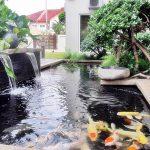 Pelapis Anti Bocor untuk Kolam Ikan