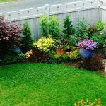 Tanaman Hias Flora untuk Taman Rumah