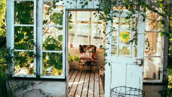 Suka Rumah Banyak Pohon? Cari Tahu Dulu Untung-Ruginya