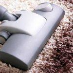 Tips Hilangkan Bau Akibat Jamur Pada Karpet