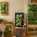 5 Cara Mengatasi Udara Panas dalam Rumah dengan Ampuh