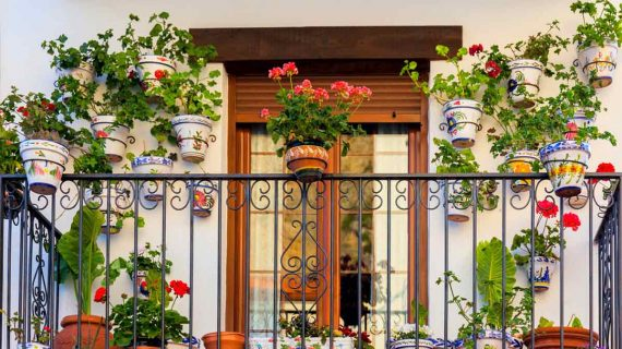 6 Tips Membuat Balkon Rumah Menjadi Lebih Cantik